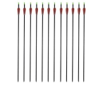 12 carbon arrows outdoors pack