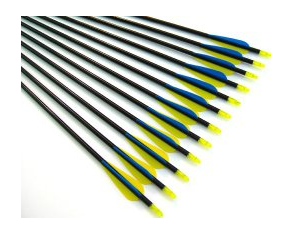 dozen fiberglass practice targeting arrows
